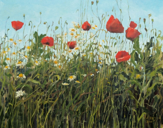 Aleksandra Rey - Poppies from Lelystadt from the series Through flowers