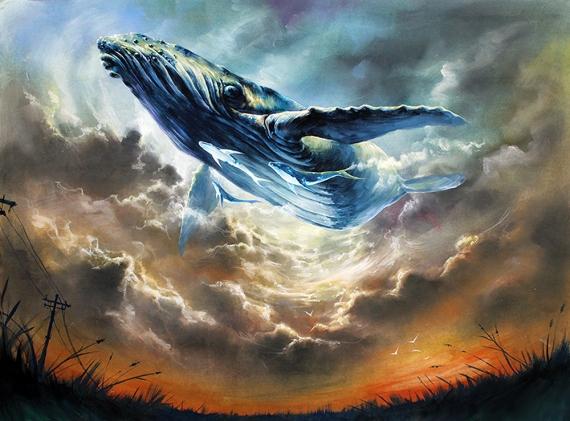 zazac namoo - Whale no2