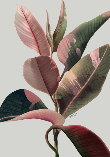 Agata Wierzbicka - Pink Leaves