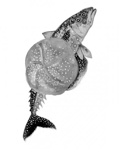Hubert Kołodziejski - FishBurger Black & White version
