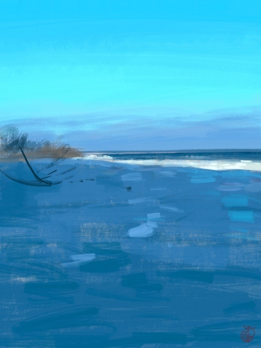 Laura La Wasilewska - The sea in winter