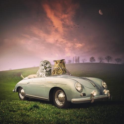 Tomasz Zaczeniuk - The ride
