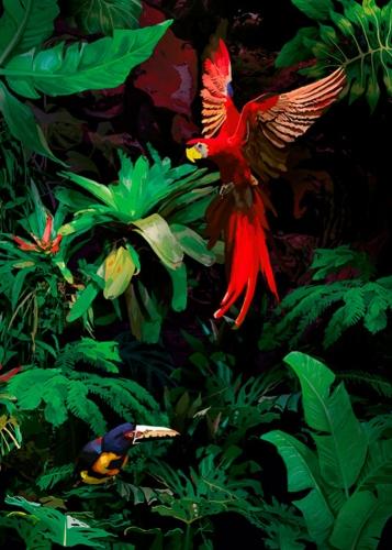 Kasia Łubińska - Dżungla
