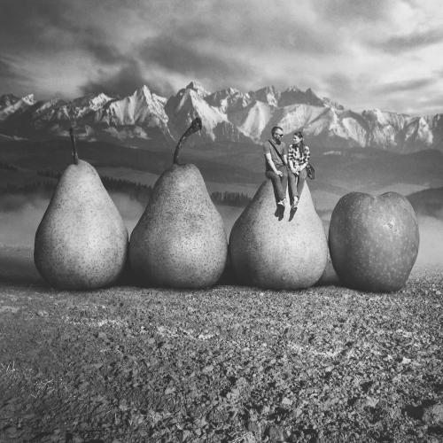 Tomasz Zaczeniuk - Fruits