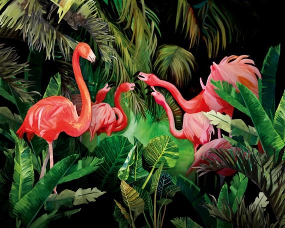 Kasia Łubińska - Flamingos