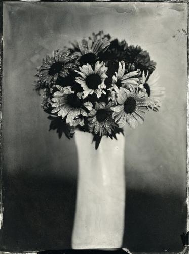 Joanna Borowiec - Flowers2