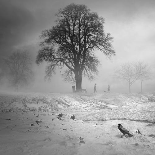 Tomasz Zaczeniuk - Winter stories