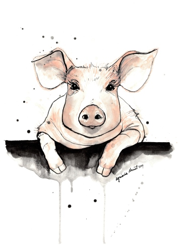 Agnieszka Nawrat - Piggy