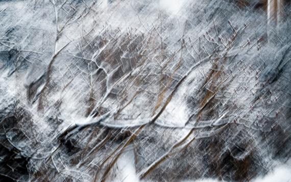 Małgorzata Marczuk - Winter impression