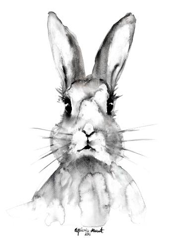 Agnieszka Nawrat - Rabbit