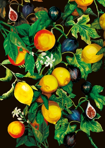 Kasia Łubińska - Lemons
