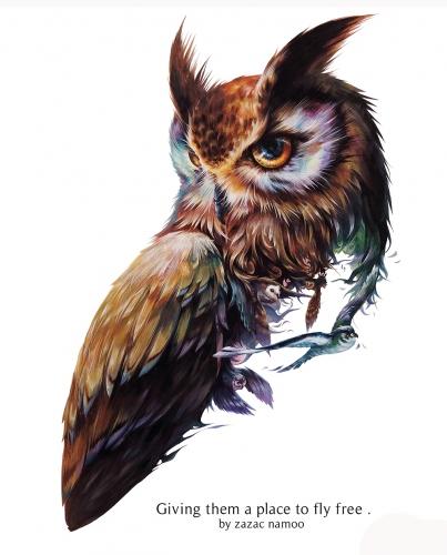 zazac namoo - OWL #2