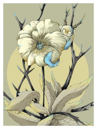 Małgorzata Wysocka - Pansy Flower /  Tenderness