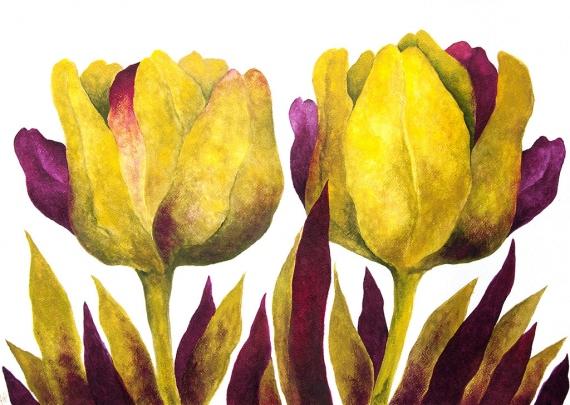 Anna Wojciechowska-Paprocka - Tulipany 5