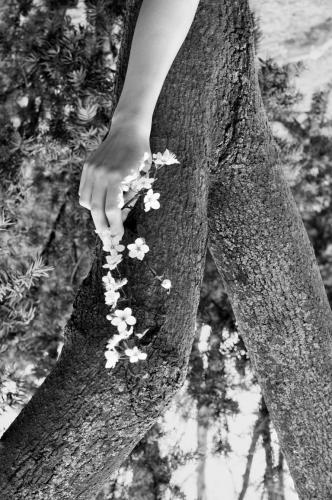 Alicja Posłuszna - Nature is a woman 2