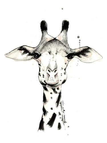 Agnieszka Nawrat - Giraffe
