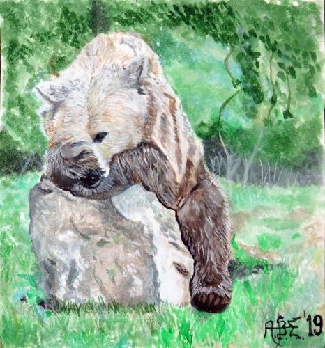 Alexey Esaulenko - Niedźwiedzi