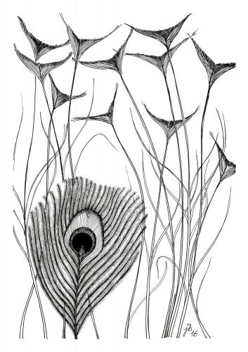 Justyna Brzozowska - Peacock Tail 3