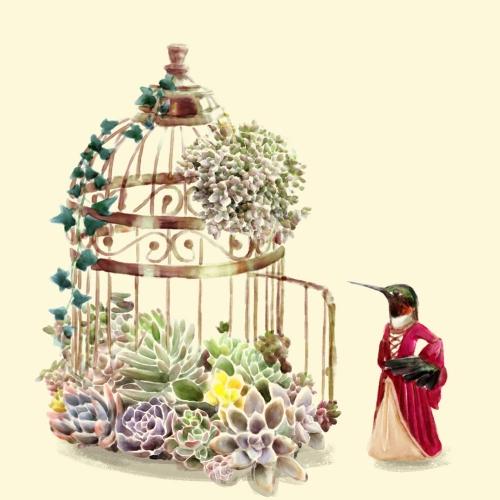 Chintami Ricci - Lady Hummingbird