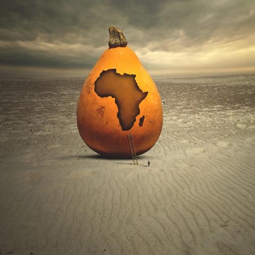 Tomasz Zaczeniuk - Africa
