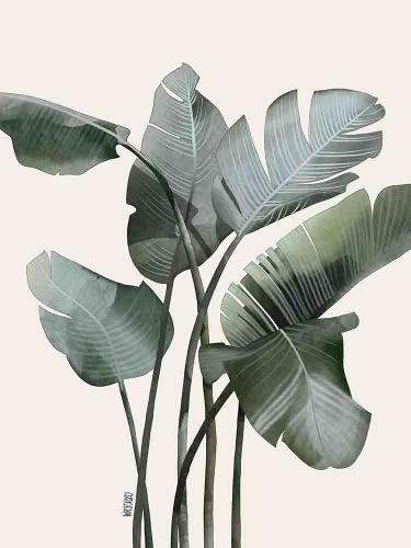 Agata Wierzbicka - Banana Leaves