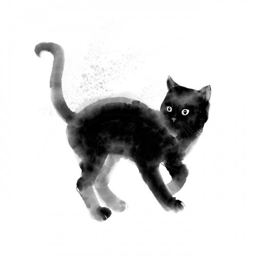 Malwina de Brade - Czarny kot