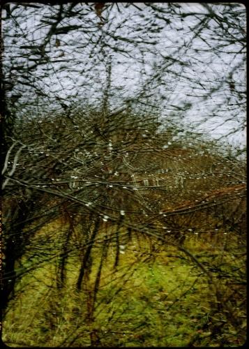 Wojciech Walkiewicz - 001 Afterimages