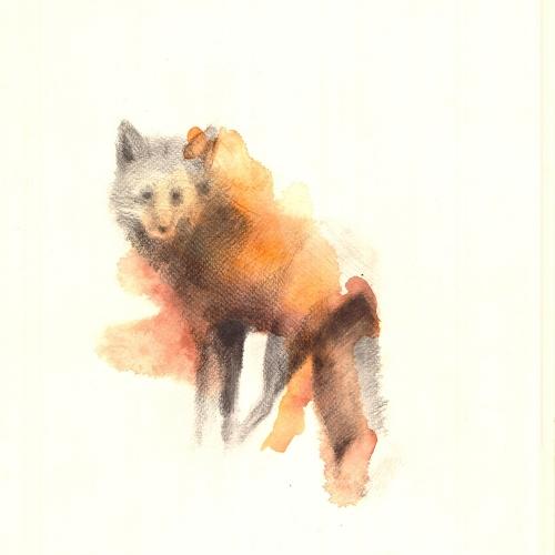 Ola Lis - Der Fuchs