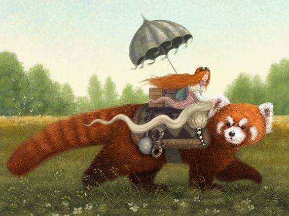 Marcin Minor - Red panda