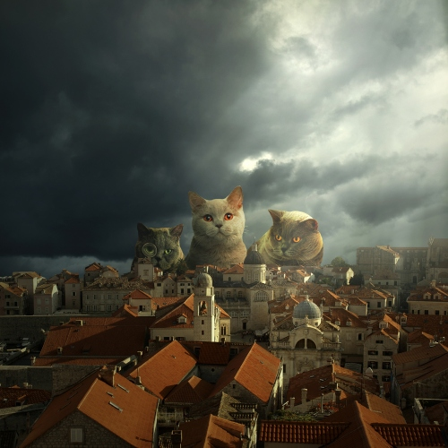Tomasz Zaczeniuk - Guardians of Dubrovnik