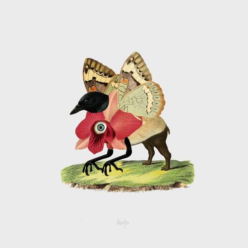 Resatio Adi Putra - Flora/Fauna #2