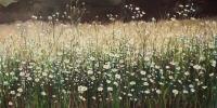 White adjective from the Herbarium series  - Aleksandra Rey