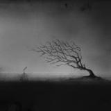 Cierpliwość - Elicia Edijanto