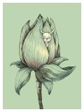 Banana flower / Briliance - Małgorzata Wysocka-Kibart