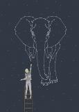 Kosmiczny słoń  - Julia Borzucka