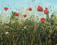 Maki z Lelystadt z cyklu Przez kwiatki - Aleksandra Rey