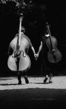 Harmonious couple   - Zenon Żyburtowicz