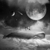 Dreams - Tomasz Zaczeniuk