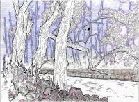 Drzewa 03 - Angelika Korzeniowska