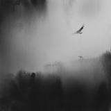 Echo (2) - Elicia Edijanto