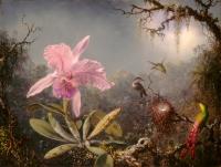 Orchid and Three Brazilian Hummingbirds