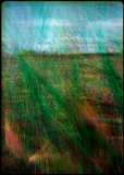 005 Afterimages - Wojciech Walkiewicz