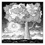 The dream tree - Kamila Złotnicka