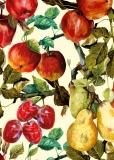 Fruits - Kasia Łubińska