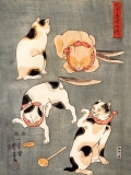 Four cats in different poses, Utagawa Kuniyoshi