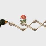 Flora/Fauna #1 - Resatio Adi Putra