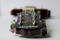Guitar - Patrycja Warzeszka