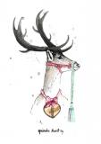 Reindeer - Agnieszka Nawrat