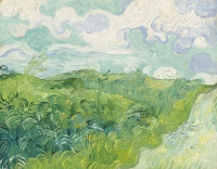 Field with Green Wheat, Vincent Van Gogh