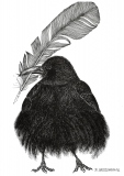 Rook and feather - Justyna Brzozowska